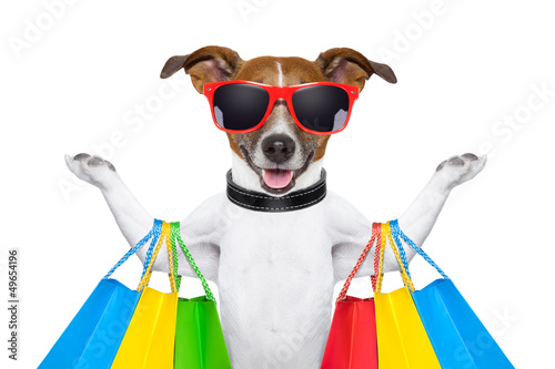 Fotobehang - shopping dog