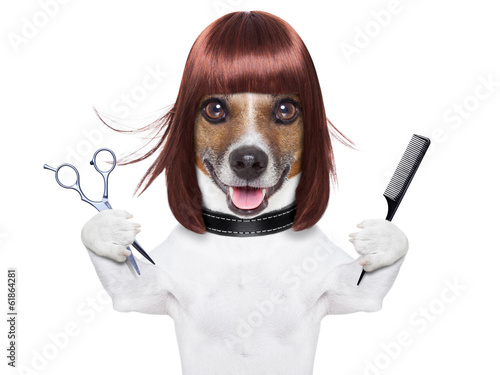 Fotobehang - hairdresser dog