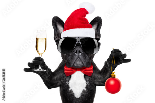 Fotobehang - santa claus christmas dog