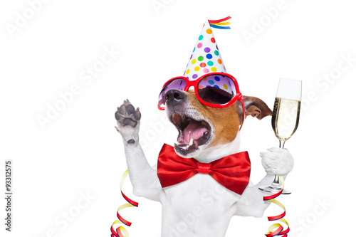 Fotobehang - happy birthday dog