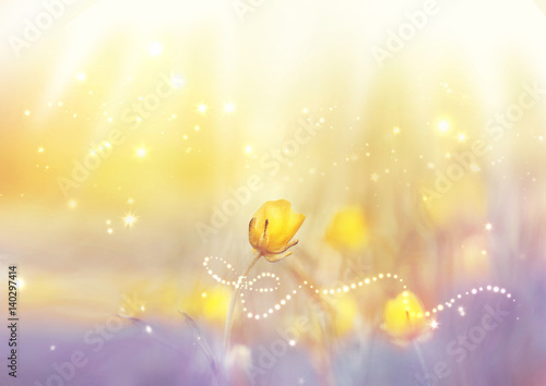 Fotobehang - Spring summer floral wallpaper template with magic ribbon sparks. Delicate yellow flower with soft focus on light lilac yellow background close-up mac