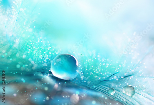 Fotobehang - A drop of water dew on a fluffy feather close-up macro with sparkling bokeh on blue blurred background. Abstract romantic delicate magical artistic im