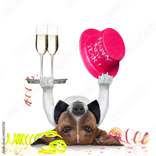 Fotobehang - new years eve dog